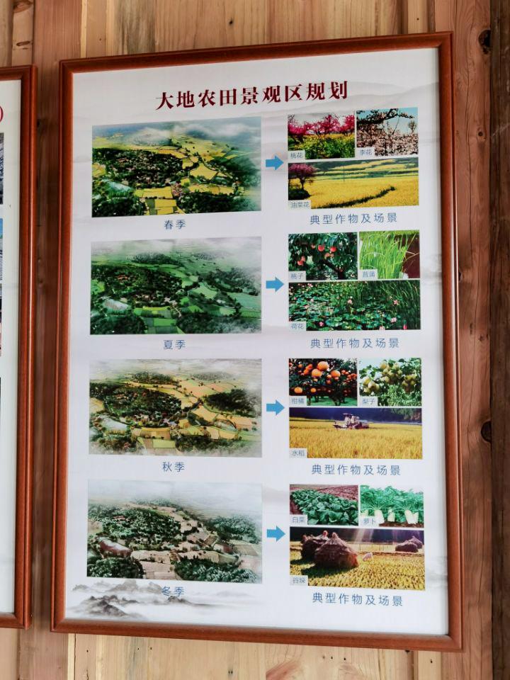 大地农田景观规划.jpg